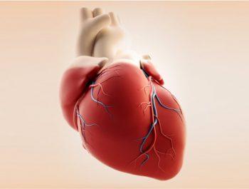 علائم و علل بروز بیماری قلبی